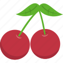 cherry, christmas, holly, leaf, mistletoe, wreath, xmas icon