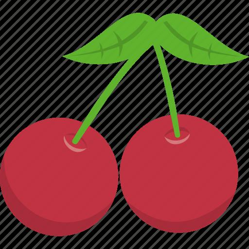 cherry, christmas, holly, leaf, mistletoe, wreath, xmas icon
