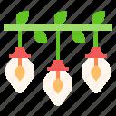 bulbs, light, bulb, decoration, illumination