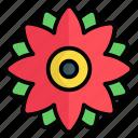 flower, nature, plant, blossom, garden, natural, leaf