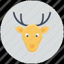 christmas, decoration, reindeer, xmas icon