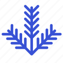 branch, christmas, christmas tree, new year, tree, winter