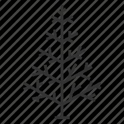 christmas, christmas tree, decoration, holiday, tree, xmas icon