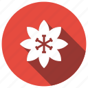 astra, flower, leaf, violet icon