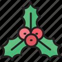 berry, christmas, holly, leaf, mistletoe, ornaments, xmas