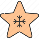 celebration, christmas, decoration, festive, holiday, star, winter