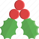 christmas, decoration, mistletoe, nature, ornament, winter, xmas icon