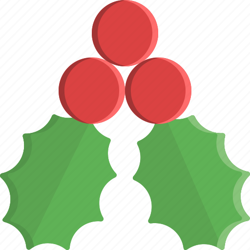 christmas, decoration, mistletoe, nature, ornament, winter, xmas icon