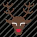 christmas, deer, holiday, merry, reindeer, rudolph, xmas