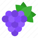 christmas, food, fruit, gastronomy, grape, xmas icon