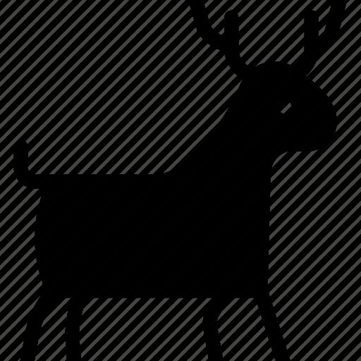 animal, cabra, deer, goat icon