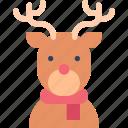 animal, deer, rheindeer, scarf, wildlife icon