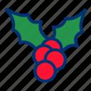 christmas, decoration, mistletoe icon