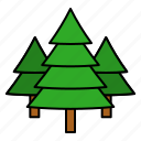 nature, pine, tree, xmas