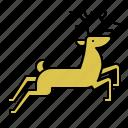 animal, deer, reindeer, xmas