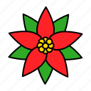 flora, floral, flower, poinsettia, xmas