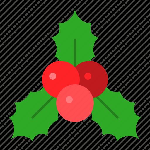 christmas, decoraton, holly, ornament, xmas icon