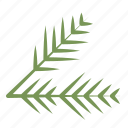 ornament, pine leaf, christmas, xmas, leaf