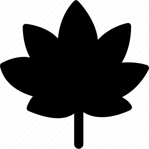 leaf, plant, tree icon