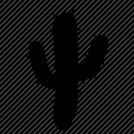 cactus, cinco, de, mayo, plant icon