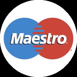 maestro, payment icon
