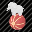 animal, ball, circus, elephant, performance, wild icon