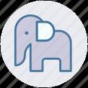 animal, animal show, circus, circus animal, circus elephant, performance