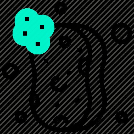 bubbles, clean, sponge, wash icon