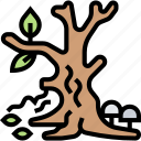 dead, tree, forest, drought, nature