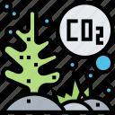 ocean, acidification, carbon, dissolve, coral