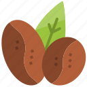 arabica, beans, blend, coffee, leaf, robusta, seed icon