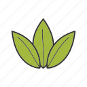 herb, herbal, leaves, plant, tea, tea leaf icon