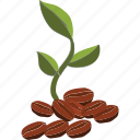 beans plant, coffee beans, coffee garden, coffee plant, harvast, plant icon