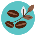 bean, coffee, leaf, leave icon