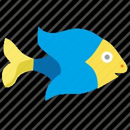 aquarium, blue, decorative, fish icon