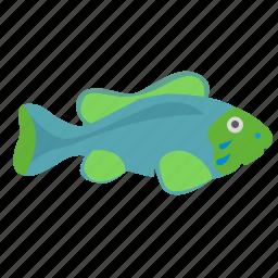 aquarium, decorative, fish, green, type icon