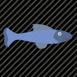 aquarium, decorative, fish, small icon