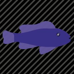 dark, fingerling, fish, underwater icon