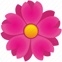 astra, flower, nature, petals icon