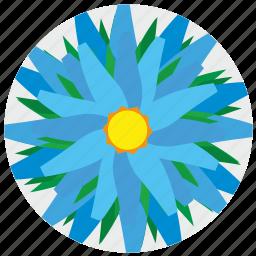 complex, flora, flower, nature icon