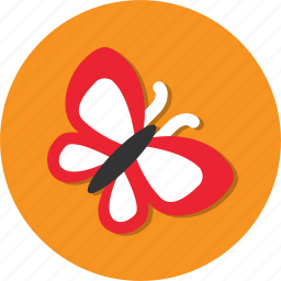 animal, butterfly, circle, fly, general icon