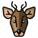 animal, christmas, deer, reindeer, santa, winter icon