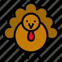 animal, autumn, fall, farm, thanksgiving, turkey
