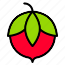 berries, fruits, natural, strawberry icon
