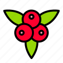 autumn, berries, berry, fall, thanksgiving icon