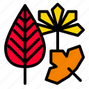 autumn, fall, forest, leaves, thanksgiving icon