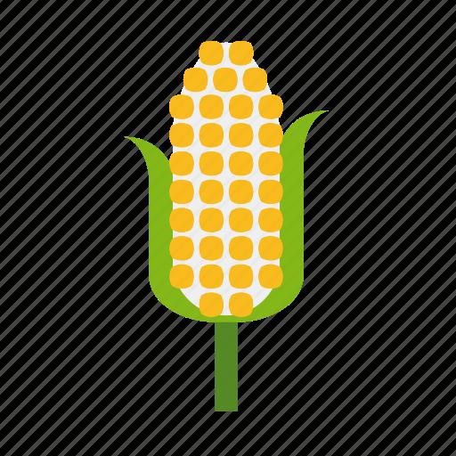 cob, corn, crop, food, vegetable icon