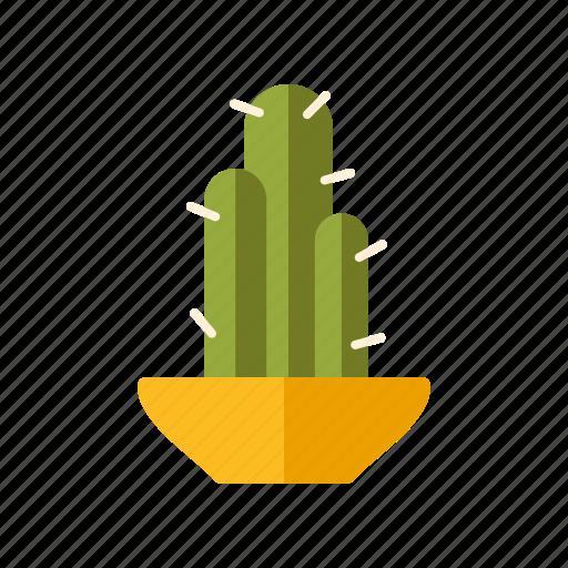 Plant, decoration, flower pot, interior, home, cactus icon