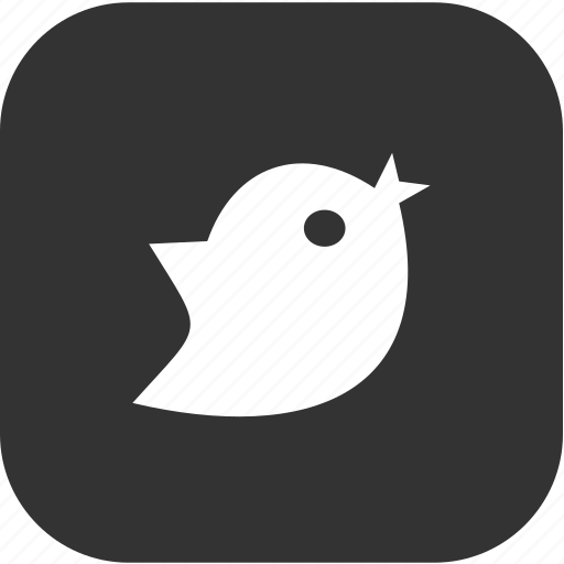 bird, communication, internet, media icon