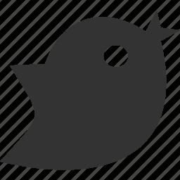 animal, bird, media, twitter icon